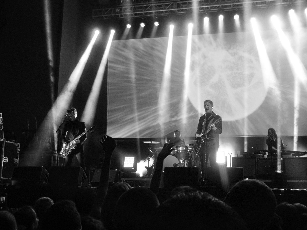 Interpol St Petersburg 110514 Galambos